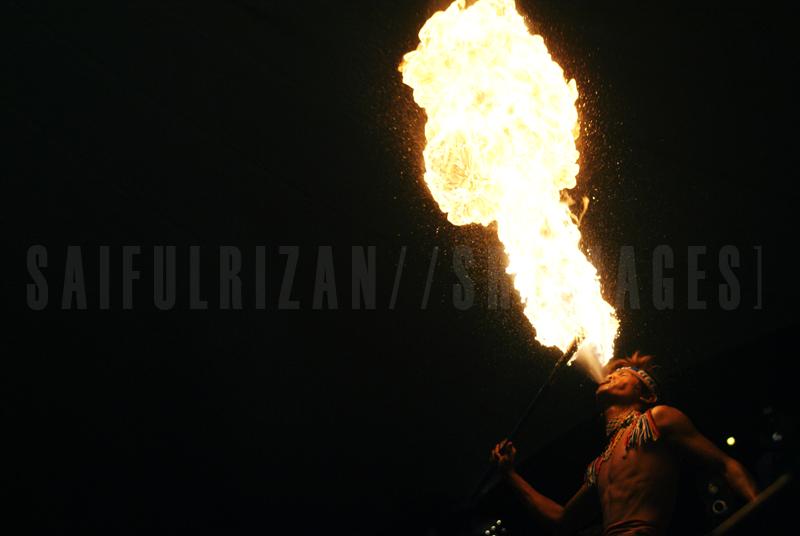 Borneo Art Festival 2010