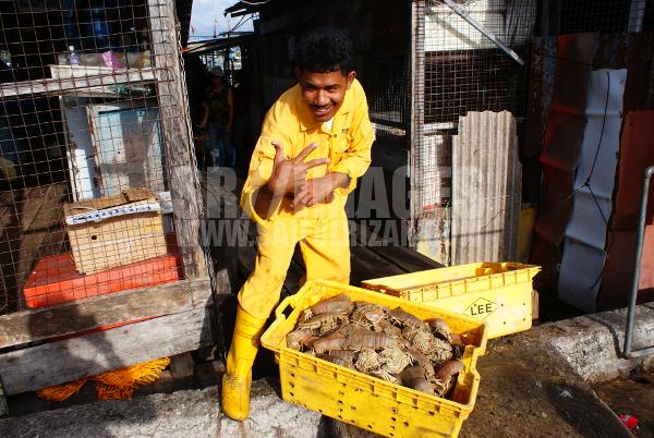 Labuan Fisheries